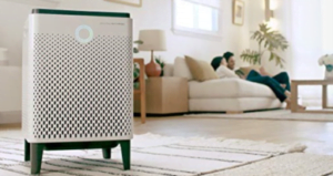 Best Air Purifiers For Living Room
