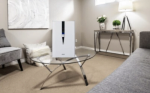 Best Basement Air Purifiers